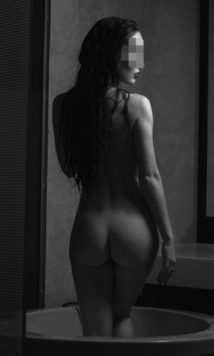снять проститутку село средний багряж